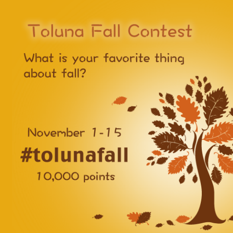 Instagram Fall Contest